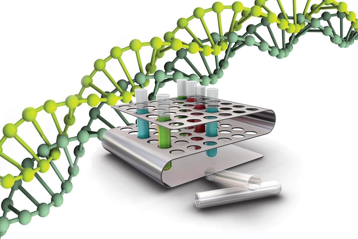 ДНК-экспертиза. Один из необходимых шагов в поиске пропавших без вести